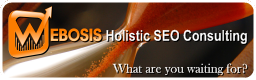 WEBOSIS Holistic SEO Consulting